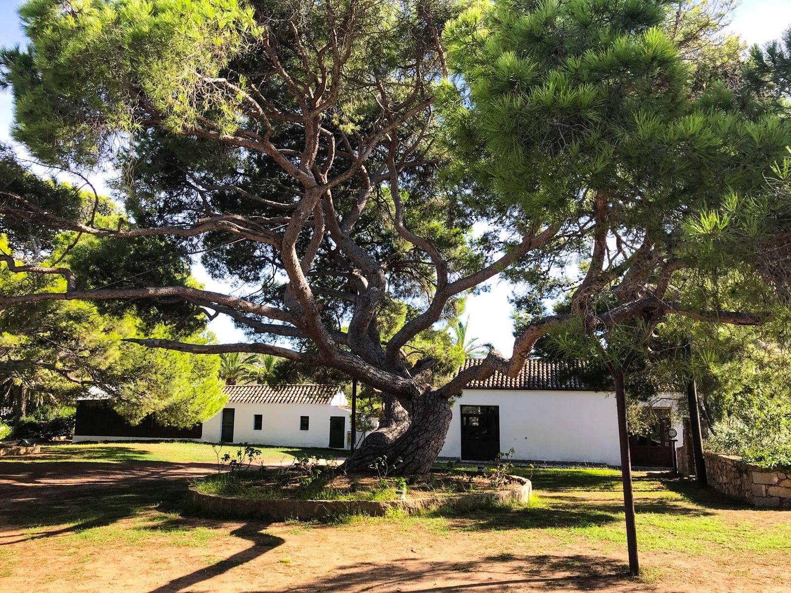 Casa Garibaldi Caprera